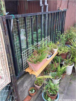 手作り植木鉢棚