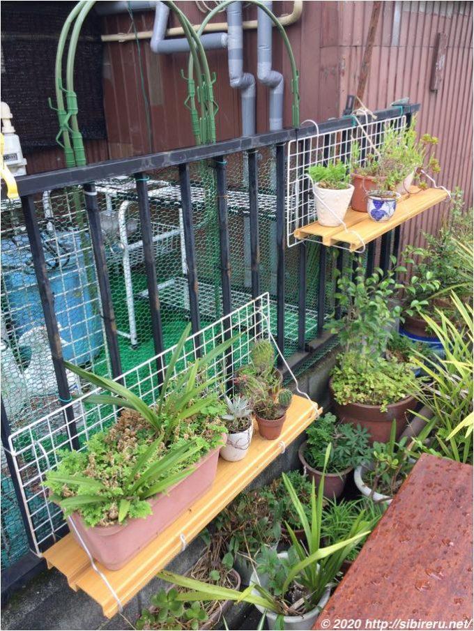 植木鉢用棚2箇所