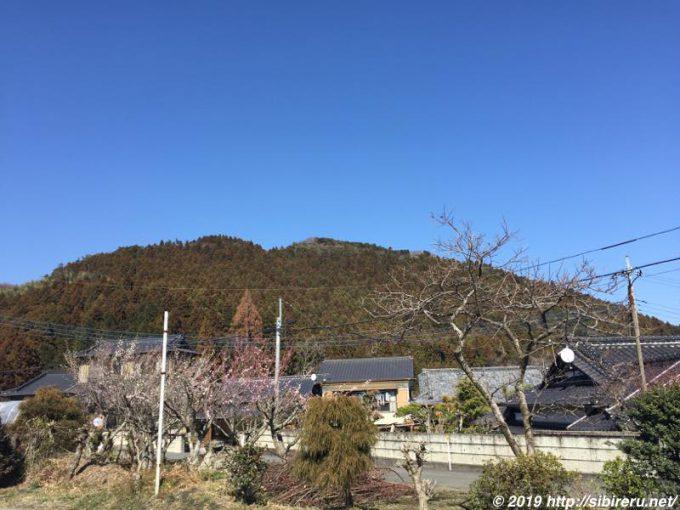 茨城県関本町