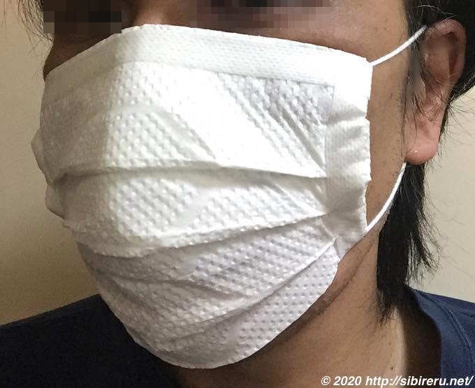 自作マスク装着状態